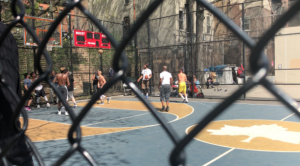 the cage basketball